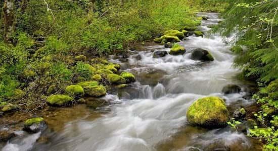ribeiro de aguas